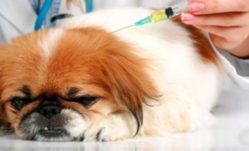 Anestesia: el beneficio supera al riesgo